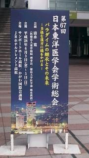 東洋医学会.JPG